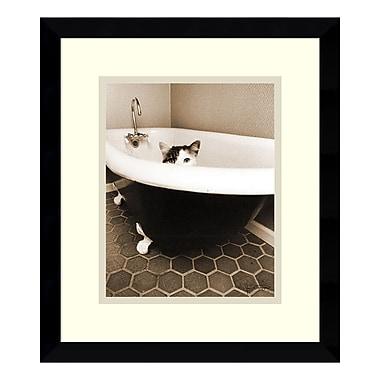Amanti Art – Reproduction encadrée de « Kitty III » par Jim Dratfield, 13 x 15 po (DSW405649)