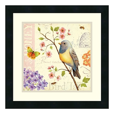 Amanti Art Framed Art Print 'Birds and Bees I' by Daphne Brissonnet, 18