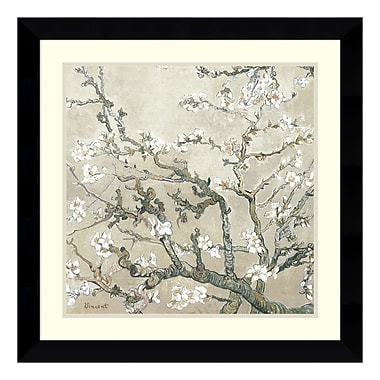 Amanti Art Framed Art Print 'Almond Branches in Tan' by Vincent van Gogh, 27