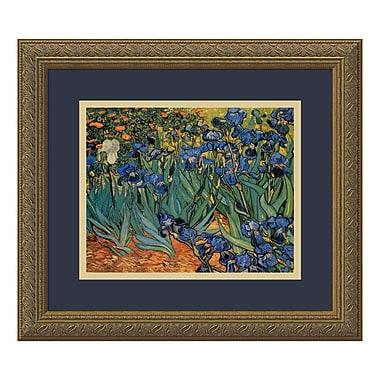 Amanti Art – Imprimé encadré Irises In The Garden, 1889, par Vincent Van Gogh, 16 x 14 po (DSW01087)