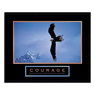 Amanti Art – Imprimé encadré Courage : Bald Eagle, 29 x 23 po (DSW01058)
