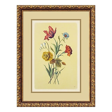 Amanti Art – Imprimé encadré « Botanical Bouquet I », 17 x 22 po (DSW573317)