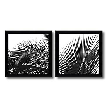 Amanti Art – Imprimé encadré « Palm Details » par Jamie Kingham, 13 x 13 po, 2/paquet (DSW426346)