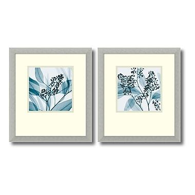 Amanti Art – Imprimé encadré, « Silver Eucalyptus » de Steven N. Meyers, 15 x 17 po, 2/paquet (DSW406540)