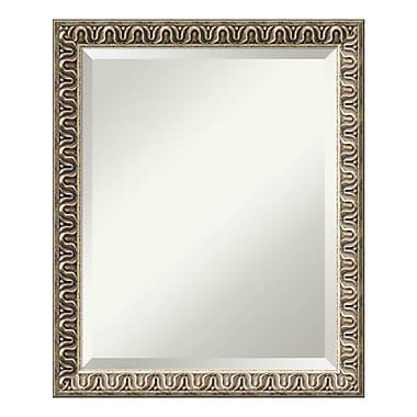 Amanti Art – Miroir mural moyen, champagne Argento, 19 x 23 po (DSW01620)