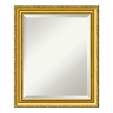 Amanti Art Wall Mirror Medium, Colonial Embossed Gold, 20