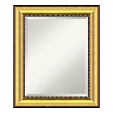 Amanti Art Wall Mirror Medium, Vegas Burnished Gold, 21