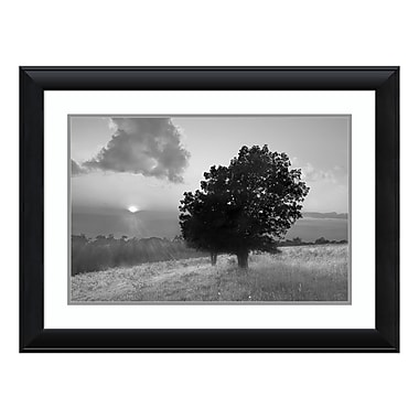 Amanti Art Framed Art Print 'Spitler Knoll Overlook' by Winthrope Hiers, 33