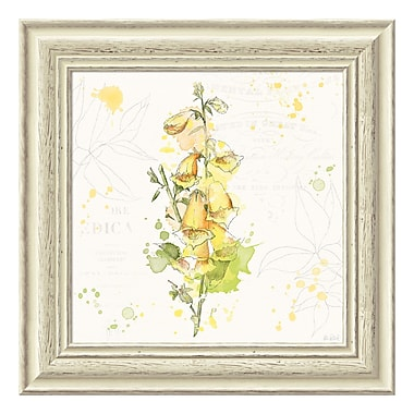 Amanti Art Framed Art Print 'Floral Splash IV' by Katie Pertiet, 19