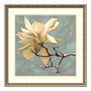 Amanti Art Framed Art Print 'Magnolia 2' by Diane Hoeptner, 33