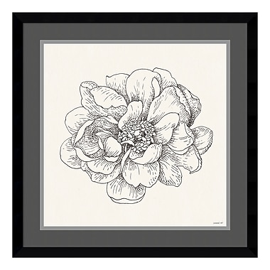 Amanti Art Framed Art Print 'Pen and Ink Florals IV' by Danhui Nai, 21