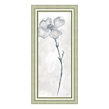 Amanti Art Framed Art Print 'Solitary Dogwood III Gray (Floral)' by Chris Paschke, 19
