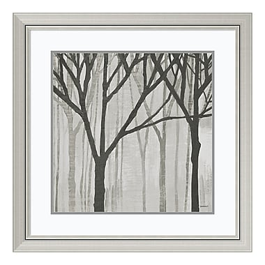 Amanti Art Framed Art Print 'Spring Trees Greystone III' by Kathrine Lovell, 30
