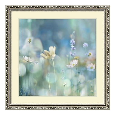 Amanti Art Framed Art Print 'Morning Meadow II (Floral)' by Kate Carrigan, 27