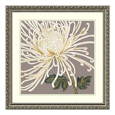 Amanti Art Framed Art Print 'Grande and Glorious (Floral)' by Judy Shelby, 23