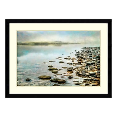 Amanti Art Framed Art Print 'Stillness' by Dianne Poinski, 46