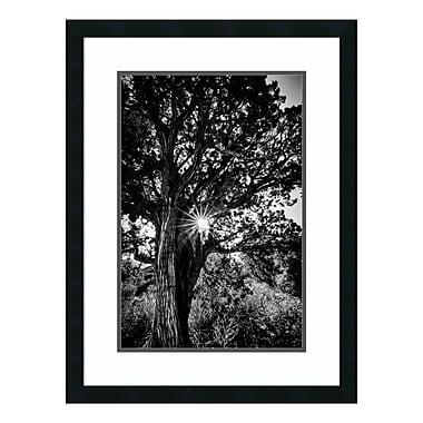 Amanti Art Framed Art Print 'Red Rock Sunrise' by Matt Marten, 22