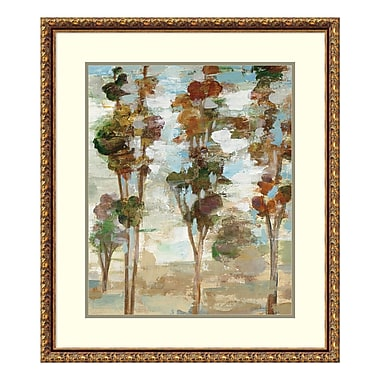 Amanti Art Framed Art Print 'Serene Forest III' by Silvia Vassileva, 26