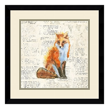 Amanti Art Framed Art Print 'Into the Woods IV no Border (Fox)' by Emily Adams, 17