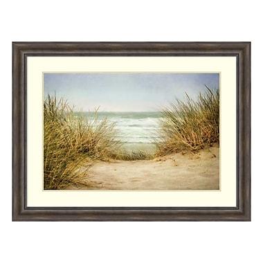 Amanti Art – Impression encadrée « Sea Grasses 1 » par Dianne Poinski, 49 x 37 po (DSW3909007)