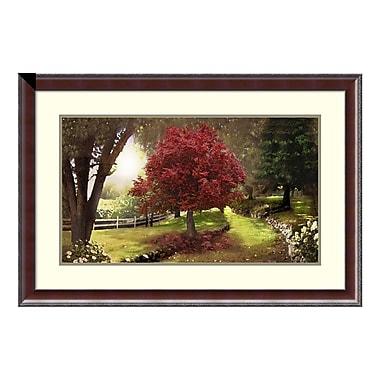Amanti Art Framed Art Print 'Inner Sanctuary (Tree)' by David M (Maclean), 37
