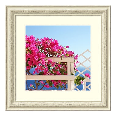 Amanti Art Framed Art Print 'Santorini Blooms (Floral)' by Sylvia Coomes, 26