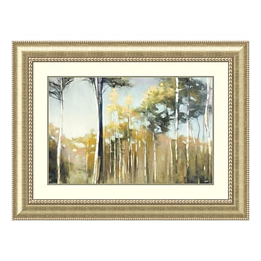 Amanti Art Framed Art Print 'Aspen Reverie' by Julia Purinton, 45