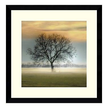 Amanti Art Framed Art Print 'Misty Silhouette' by Steven Mitchell, 17