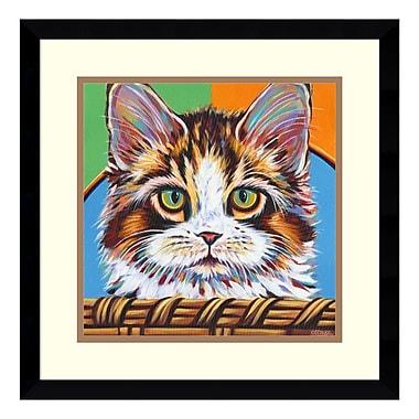 Amanti Art Framed Art Print 'Kitten in Basket II' by Carolee Vitaletti, 17