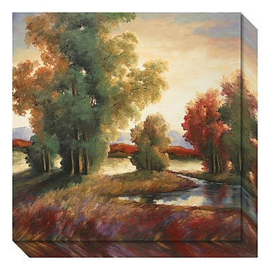 Amanti Art Canvas Art Gallery Wrap 'Mountain Shadows' by Adam Rogers, 20