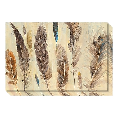 Amanti Art Canvas Art Gallery Wrap 'Feather Study' by Albena Hristova, 30