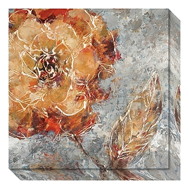 Amanti Art Canvas Art Gallery Wrap 'Ashanti I (Floral)' by Adam Rogers, 20