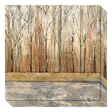Amanti Art Canvas Art Gallery Wrap 'Telluride II (Forest)' by Jack Roth, 20