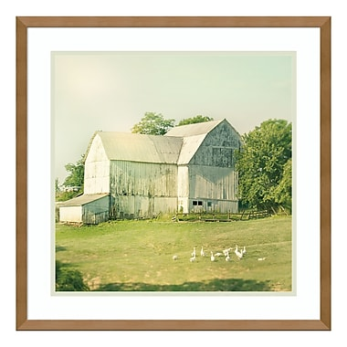 Amanti Art Framed Art Print 'Farm Morning III Square (Barn)' by Sue Schlabach, 21