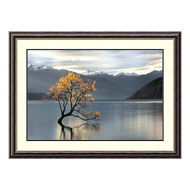 Amanti Art Framed Art Print 'Undisturbed' by Michael Cahill, 46