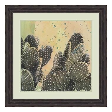 Amanti Art Framed Art Print 'Desert Dreams II (Cactus)' by Naomi McCavitt, 25