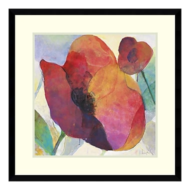 Amanti Art Framed Art Print 'Poppy I' by Doug Kennedy, 25