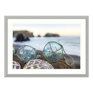 Amanti Art Framed Art Print 'Rodeo Beach Shells 16' by Alan Blaustein, 30