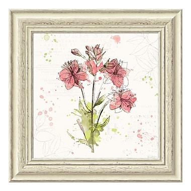 Amanti Art Framed Art Print 'Floral Splash V' by Katie Pertiet, 19