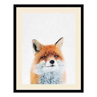 Amanti Art Framed Art Print 'Fox' by Tai Prints, 23