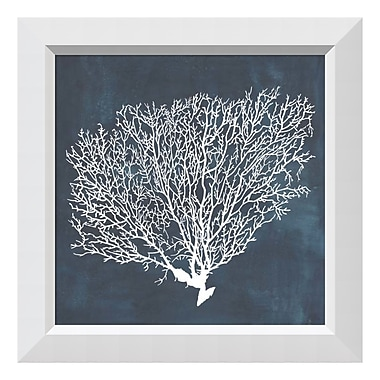 Amanti Art Framed Art Print 'Inverse Sea Fan II' by Grace Popp, 22