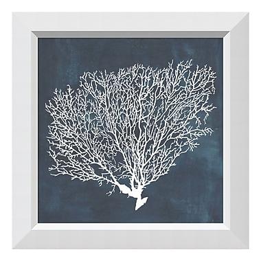 Amanti Art – Impression encadrée « Inverse Sea Fan II » par Grace Popp, 22 x 22 po (DSW3910658)