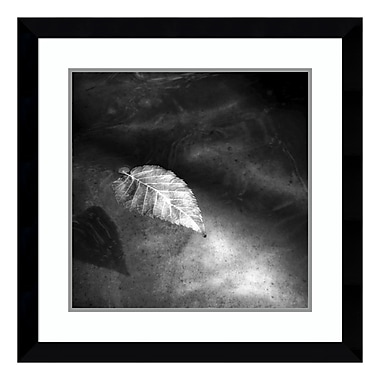 Amanti Art – Impression encadrée par Matt Marten, « Floating Away 2 (Leaf), 29 x 29 po (DSW3909751)