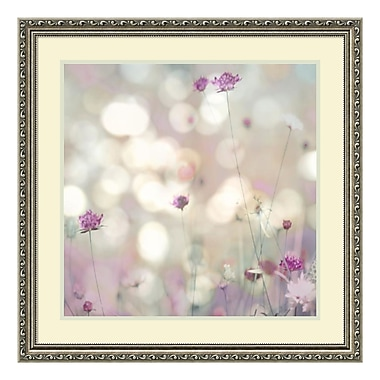 Amanti Art Framed Art Print 'Floral Meadow I (Floral)' by Kate Carrigan, 27