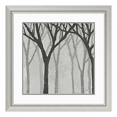 Amanti Art Framed Art Print 'Spring Trees Greystone I' by Kathrine Lovell, 30