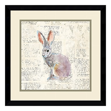 Amanti Art – Impression encadrée, « Into the Woods I no Border (Hare) » par Emily Adams, 17 x 17 po (DSW3909689)
