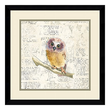 Amanti Art Framed Art Print 'Into the Woods II no Border (Owl)' by Emily Adams, 17