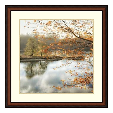 Amanti Art Framed Art Print 'Morning Mirror 2' by Dianne Poinski, 33