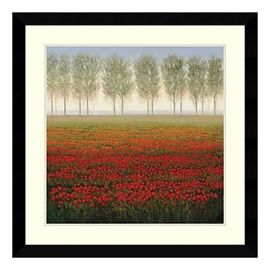 Amanti Art Framed Art Print 'Morning Mist' by C. Park, 33