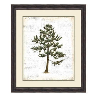 Amanti Art Framed Art Print 'Into the Woods Trees I' by Emily Adams, 27